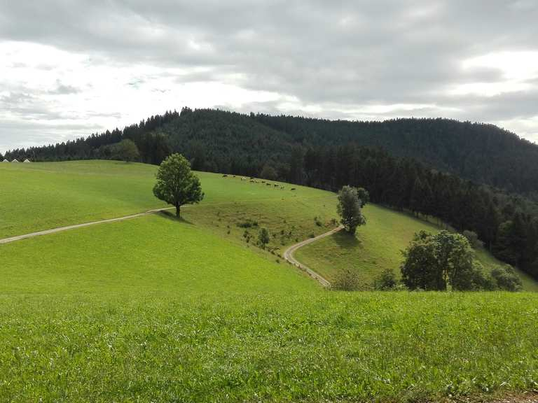 top 16 hikes and walking routes around oberharmersbach komoot. Black Bedroom Furniture Sets. Home Design Ideas