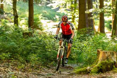 Mountainbike-Touren in Rheinland-Pfalz