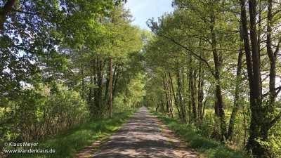 Radtouren in Worpswede