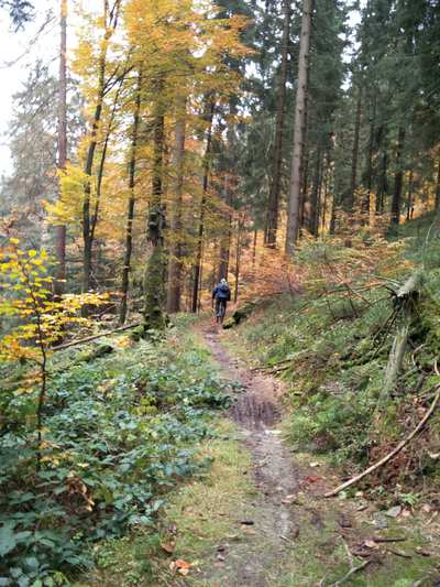 Mountainbike-Touren in der Oberpfalz