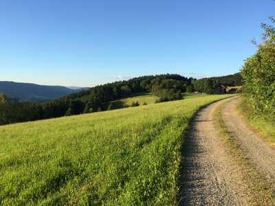 Radtouren in der Ortenau