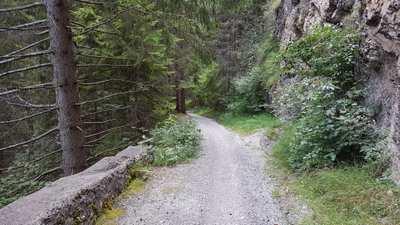 Mountainbike-Touren in Bichlbach