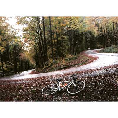 Road Cycling Routes in the Wienerwald