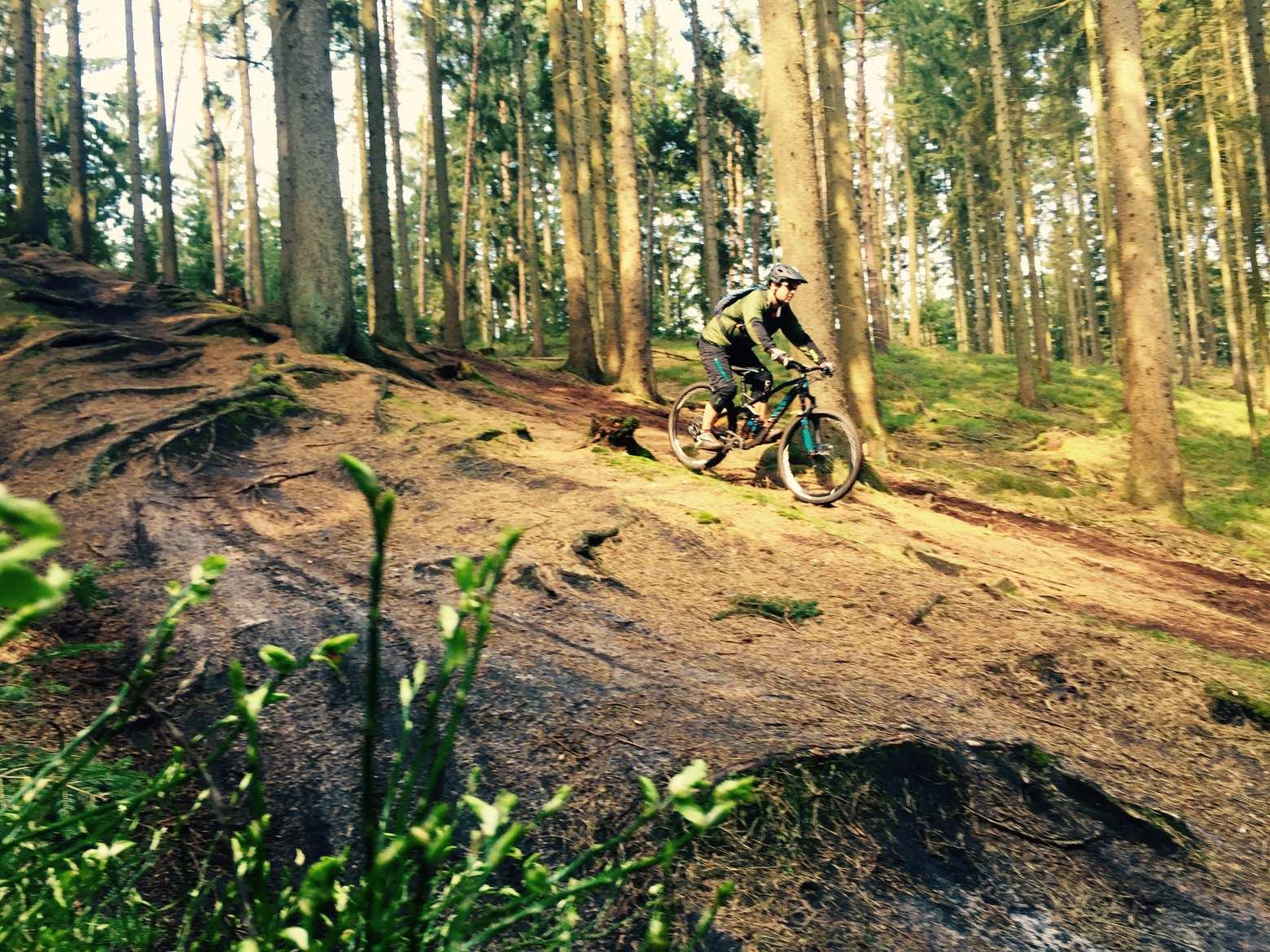 Mountainbike-Touren rund um Hamburg