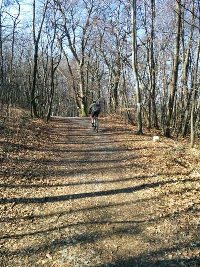 Mountainbike-Touren rund um Wien