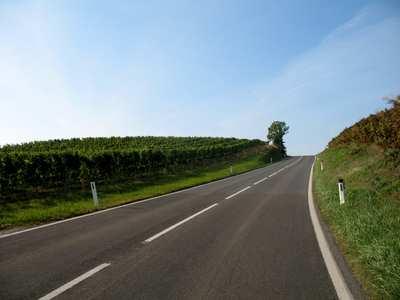 Rennradtouren rund um Wien