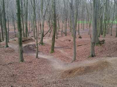 Mountainbike-Touren rund um Köln