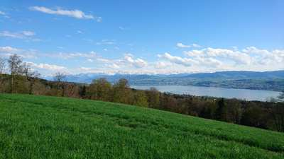 Road Cycling Routes Around Greifensee