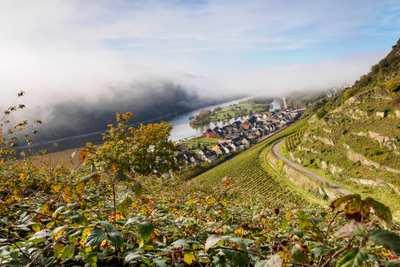 Mountainbike-Touren rund um Trier