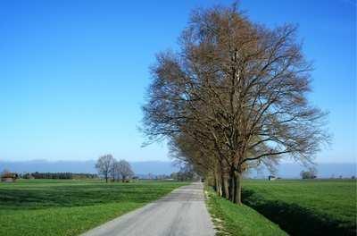 Rennradtouren rund um Rosenheim