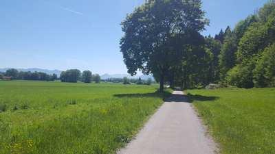 Radtouren rund um Rosenheim