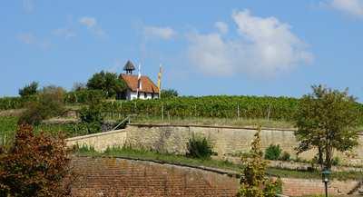 Wandern rund um Bad Dürkheim