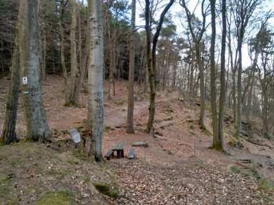 Mountainbike-Touren in der Pfalz
