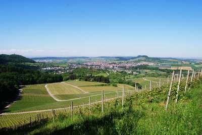 Mountainbike-Touren rund um Ludwigsburg