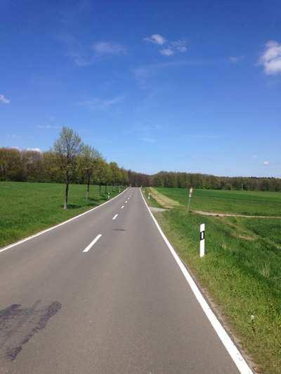 Rennradtouren in der Pfalz