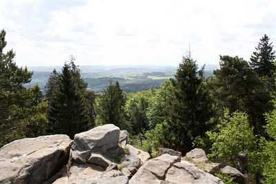 Mountainbike-Touren in Lippe